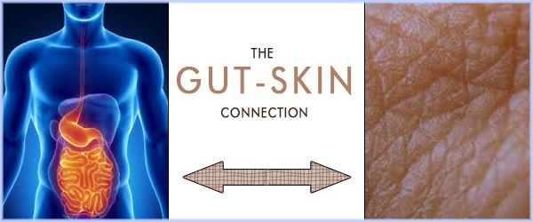 The Gut Microbiome